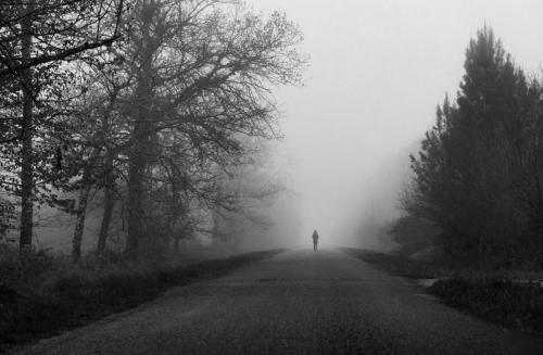 Estelle brouillard 2